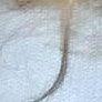 Klara Krukova