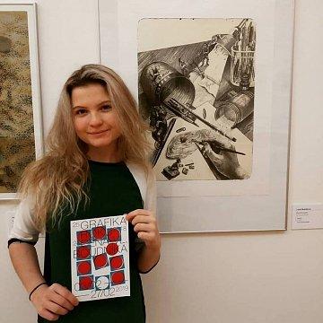 Doučování dějin umění, kresby, grafického designu, ilustrace od mladého člověka s reálnou praxí