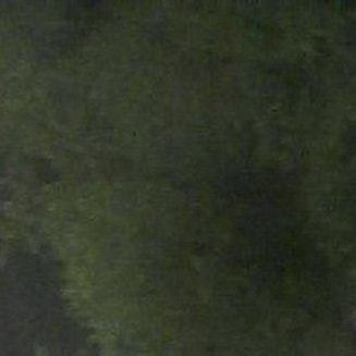 Monika Krčmárová